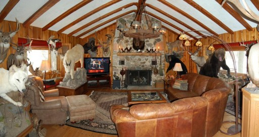 Animal-House-trophy-room1-512x271