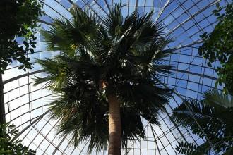 Botanical gardens Ednburgh_the womens room_01
