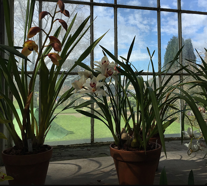Botanical gardens Ednburgh_the womens room_17