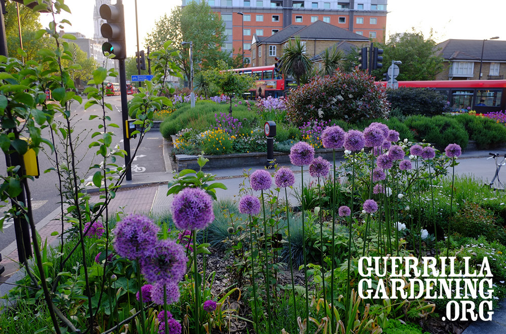 GuerrillaGardeningWalk2016