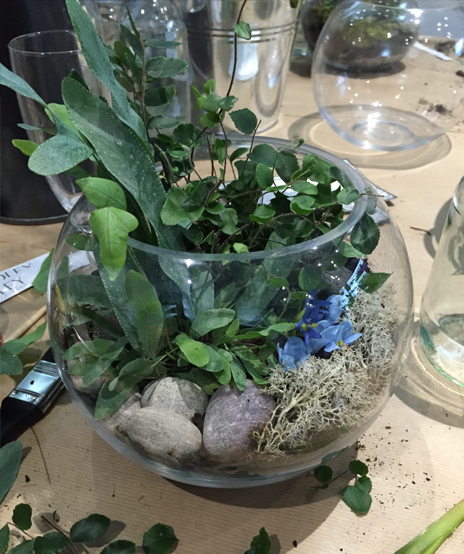 How to make a terrarium with Grace & Thorn and Yardley 6