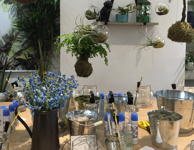 How to make a terrarium with Grace & Thorn and Yardley