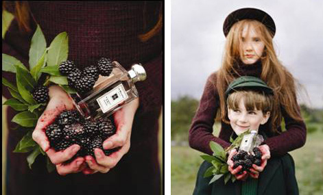 blackberry and bay at jo malone
