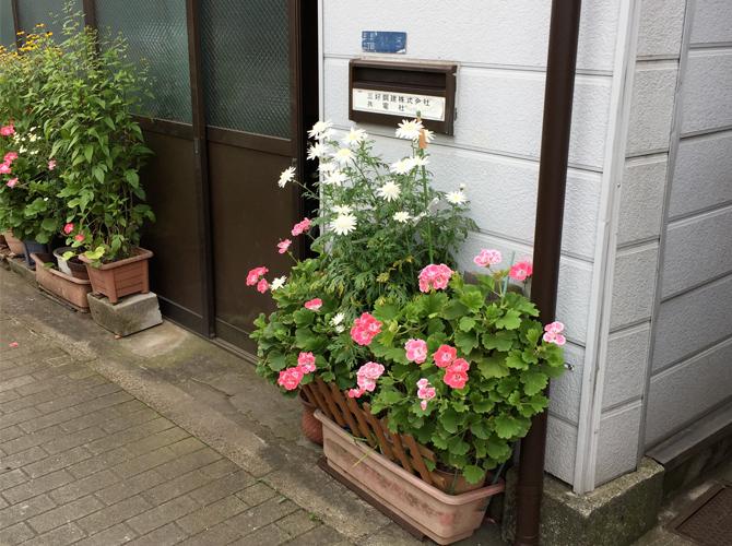 botanics-tokyo
