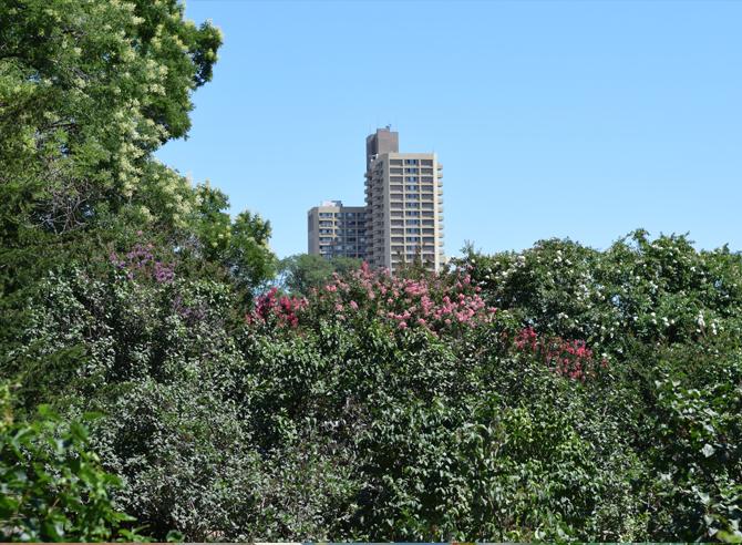 brooklyn-garden-02