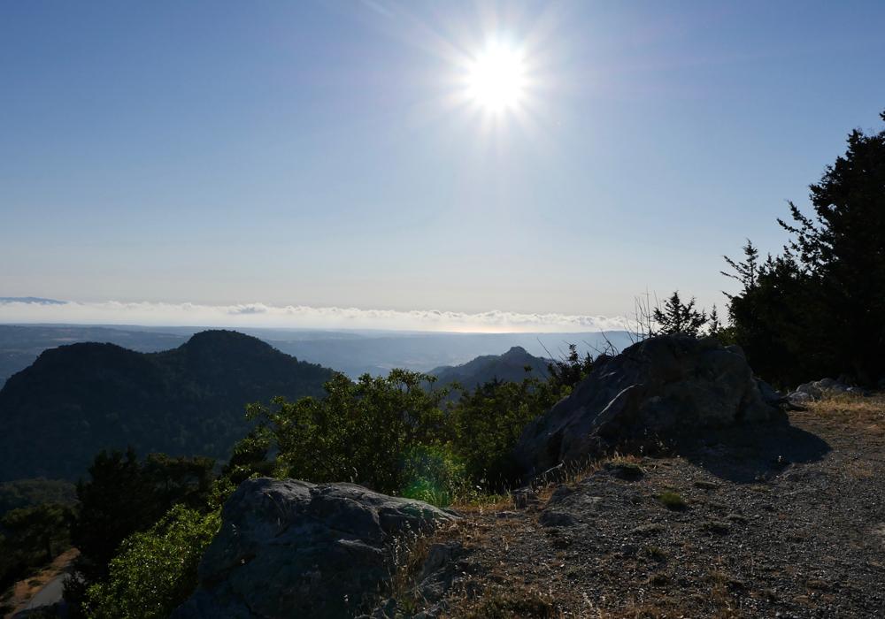 cypress-thewomensroomblog-04