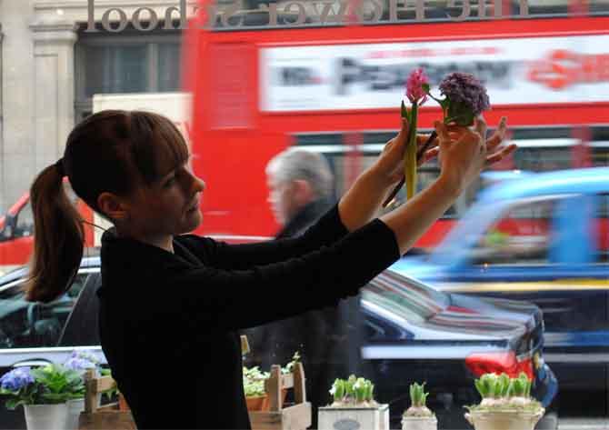 flowers jamie aston