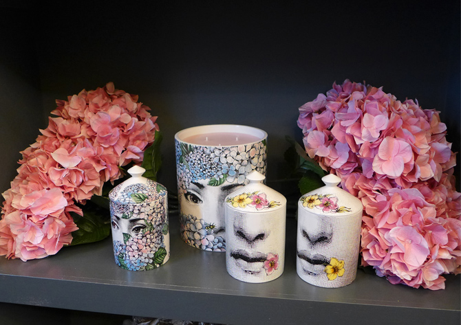 fornasetti candles hydrangea