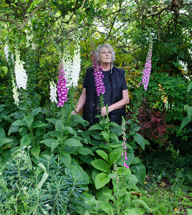 Germaine Greer by Nancy Honey