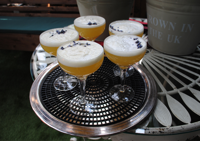 gilbert gin cocktails