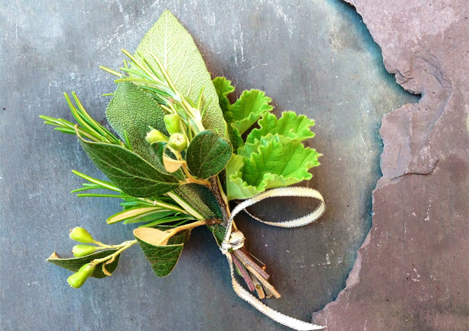 hattie fox flowers for TWR