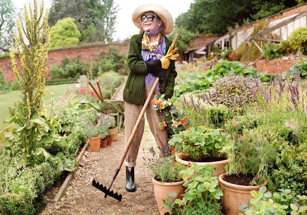jo-malone-herb-garden-thewomensroomblog