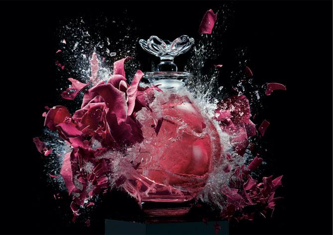 meet the perfumers