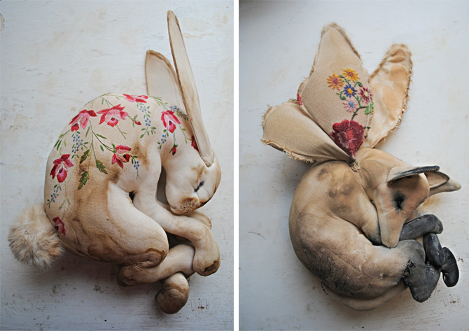 mr finch fox and hare