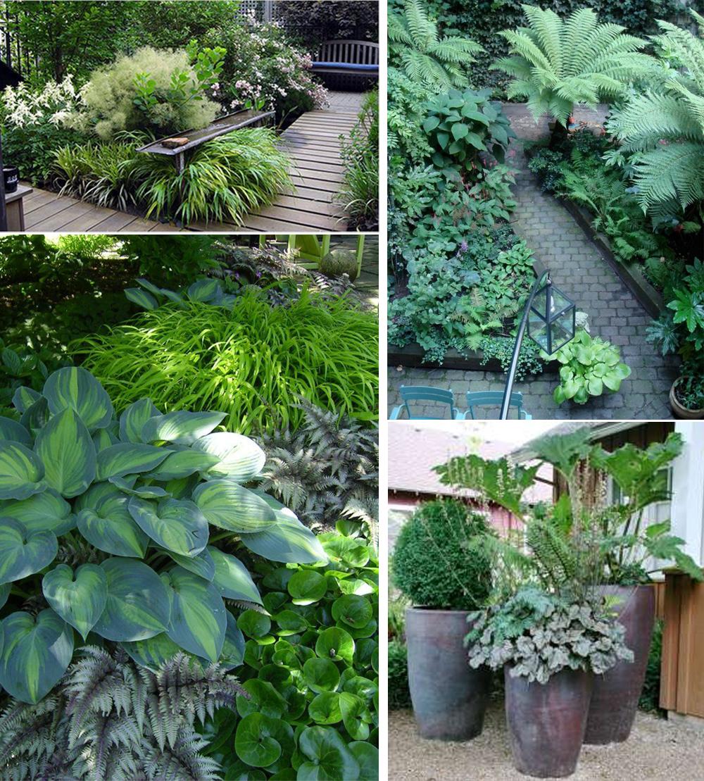small-gardens-03
