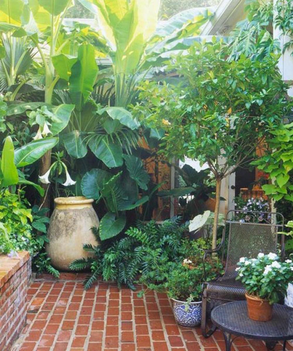 small-gardens-nicola