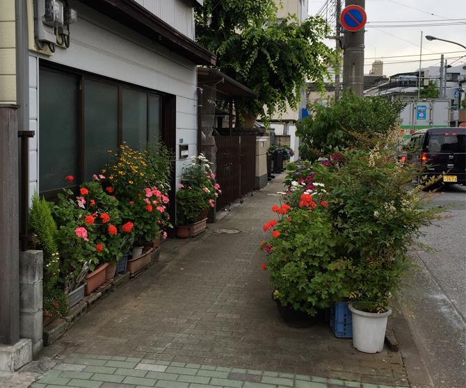 tokyo-botanics-02